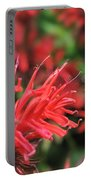 Hummingbird Moth Feeding On Red Flower Portable Battery Charger