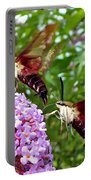 Hummingbird Moths Portable Battery Charger