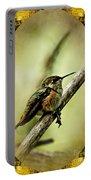 Hummingbird Noveau Portable Battery Charger