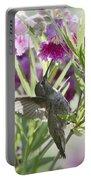 Hummingbird On A Desert Willow Portable Battery Charger