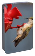 Hummingbird On Feeder Portable Battery Charger
