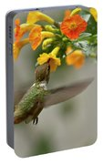 Hummingbird Sips Nectar Portable Battery Charger