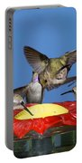 Hummingbirds At Feeder Portable Battery Charger