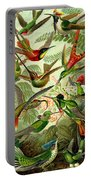 Hummingbirds Portable Battery Charger