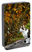Hungry Cat Portable Battery Charger