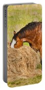 Hungry Horse Portable Battery Charger