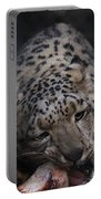 Hungry Leopard Portable Battery Charger