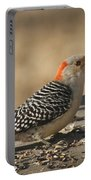 Hungry Red-bellied Woodpecker - Melanerpes Carolinus Portable Battery Charger