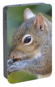 Hungry Squirrel Portable Battery Charger