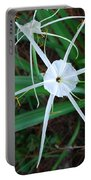 Hurricane Lilly Portable Battery Charger