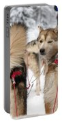 Husky Dogs Pull A Sledge  Portable Battery Charger