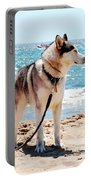Husky On The Beach Portable Battery Charger