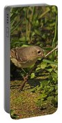 Hutton's Vireo Portable Battery Charger