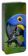 Hyacinth Macaw Anodorhynchus Portable Battery Charger