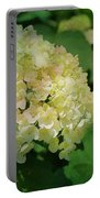 Hydrangea In Soft Light Portable Battery Charger