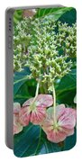 Hydrangea With A New Look Portable Battery Charger