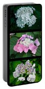Hydrangeas On Parade Portable Battery Charger