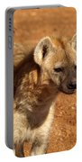 Hyena Portable Battery Charger