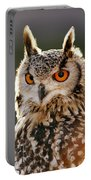 Hypnoteyes  Eurasian Eagle Owl Portable Battery Charger