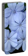 I Love Blue Flowers Portable Battery Charger
