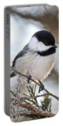I May Be Tiny But You Should See Me Fly Portable Battery Charger