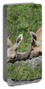 Ibex Doing Battle Portable Battery Charger