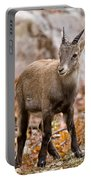 Ibex Pictures 10 Portable Battery Charger