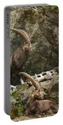 Ibex Pictures 112 Portable Battery Charger