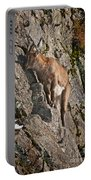 Ibex Pictures 151 Portable Battery Charger