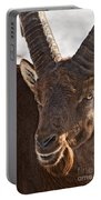 Ibex Pictures 169 Portable Battery Charger