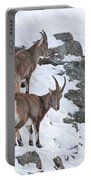 Ibex Pictures 171 Portable Battery Charger