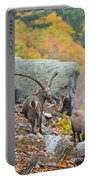 Ibex Pictures 174 Portable Battery Charger
