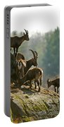 Ibex Pictures 176 Portable Battery Charger