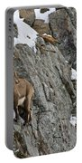 Ibex Pictures 183 Portable Battery Charger