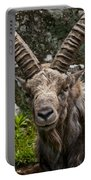 Ibex Pictures 190 Portable Battery Charger