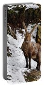 Ibex Pictures 22 Portable Battery Charger