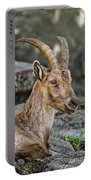 Ibex Pictures 38 Portable Battery Charger