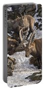 Ibex Pictures 83 Portable Battery Charger