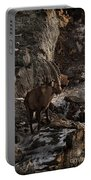 Ibex Pictures 86 Portable Battery Charger