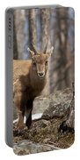 Ibex Pictures 92 Portable Battery Charger