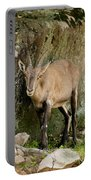 Ibex Pictures 115 Portable Battery Charger