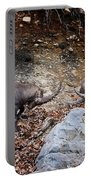Ibex Pictures 134 Portable Battery Charger