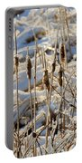Ice Coated Bullrushes Portable Battery Charger