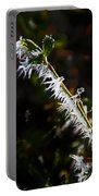 Ice Crystals In Morning Sun Portable Battery Charger