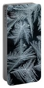 Ice-flowers Frost Pattern Tracery On Frost Window Portable Battery Charger