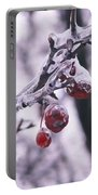Iced Berries Portable Battery Charger