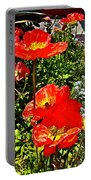 Icelandic Poppies Near Fishermen's Wharf In San Francisco-california Portable Battery Charger
