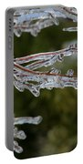 Icy Branch-7482 Portable Battery Charger