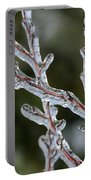 Icy Branch-7485 Portable Battery Charger