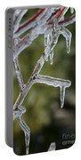 Icy Branch-7506 Portable Battery Charger